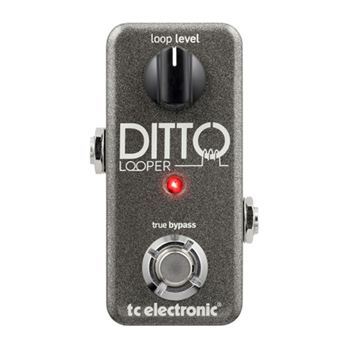 [TC Electronic] Ditto Looper 기타 이펙터